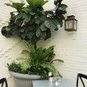 Botanical Seating